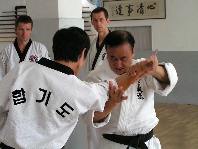 Хапкидо - корейское единоборство из Японии
